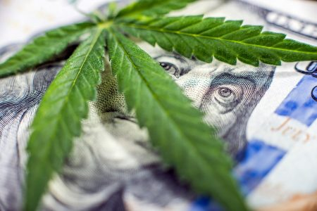 Cannabis Businesses Turn to Security Experts as the Market Continues its Expansion