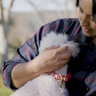 Purina Donates More Than $31 Million to Help Pets and People in Need