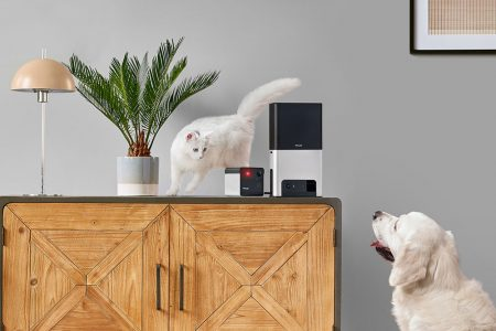 Petcube Launches Two New Pet Cameras, For The First Time With Alexa Built-in And 180° Lens