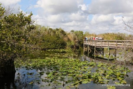 Road Scholar Launches New Environmental Program Series