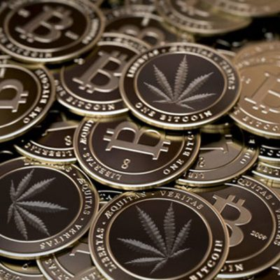 Why Investors Become Bullish About Investing in Crypto and Cannabis