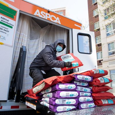 ASPCA® Commits to Assisting 200,000 Animals Impacted by COVID-19 Crisis