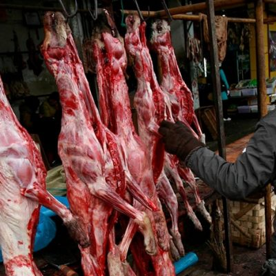 Over 30 Million Dogs Are Served on the Dining Table Every Year in Asia, 70% of Which Are Stolen Pets