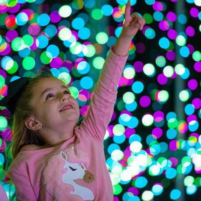 World of Illumination Donates $25,000 in Ticket Proceeds to Make-a-Wish Arizona