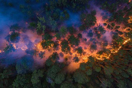 Cooling La Niña Event Failed to Tame the Global Heat
