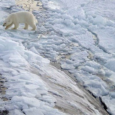 Commercial and Military Activities in the Arctic Ocean Are Hazardous to Global Health