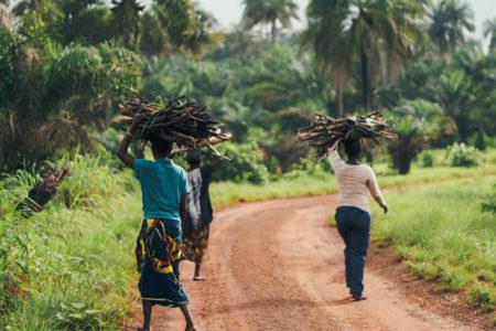 Global Calls for Massive Scale-Up of Climate Adaptation in Africa
