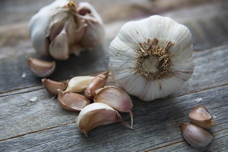Potential Use of Garlic Compounds in Human Medicine