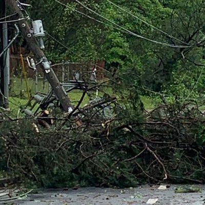 Majority of Outages in Metro Atlanta Counties Due to Fallen Trees and Downed Power Lines