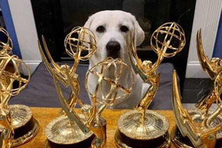 PenFed Digital Earns 7 Emmy Awards for Docuseries Highlighting Promising PTSD Treatment