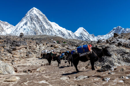 An Exclusive Chat With Founder of Nepal Hiking Team
