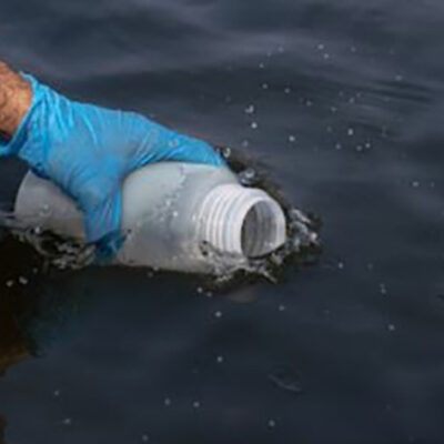 One Water Bucket to Find Them All: Detecting Fish, Mammals, and Birds From a Single Sample
