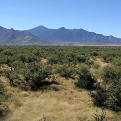 NASA Grant Aids Geography Professor's Climate Research on Dryland Regions